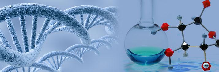 单克隆抗体的纯化